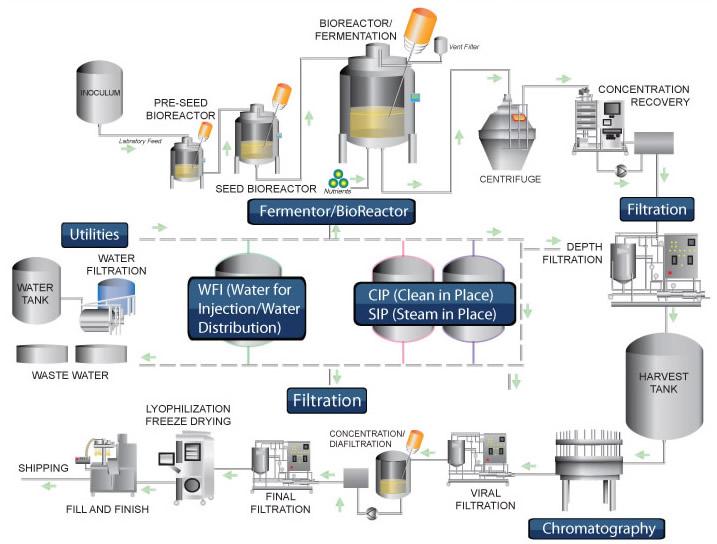 Biotech Process Map
